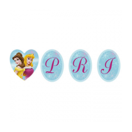 Disney Princess Banner