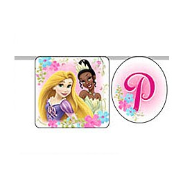 Disney Fanciful Princess Banner