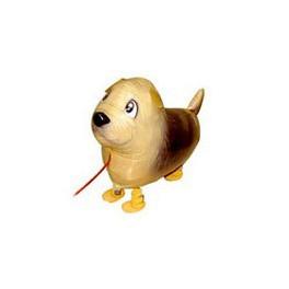 "15"" Norfolk Terrier Pet Balloon"