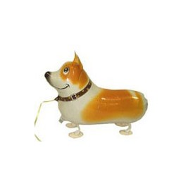 "15"" Pembroke Welsh Corgi Pet Balloon"